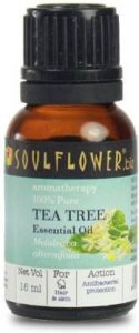 Sunflower Tea Tree Oil | Best Tea Tree Oil