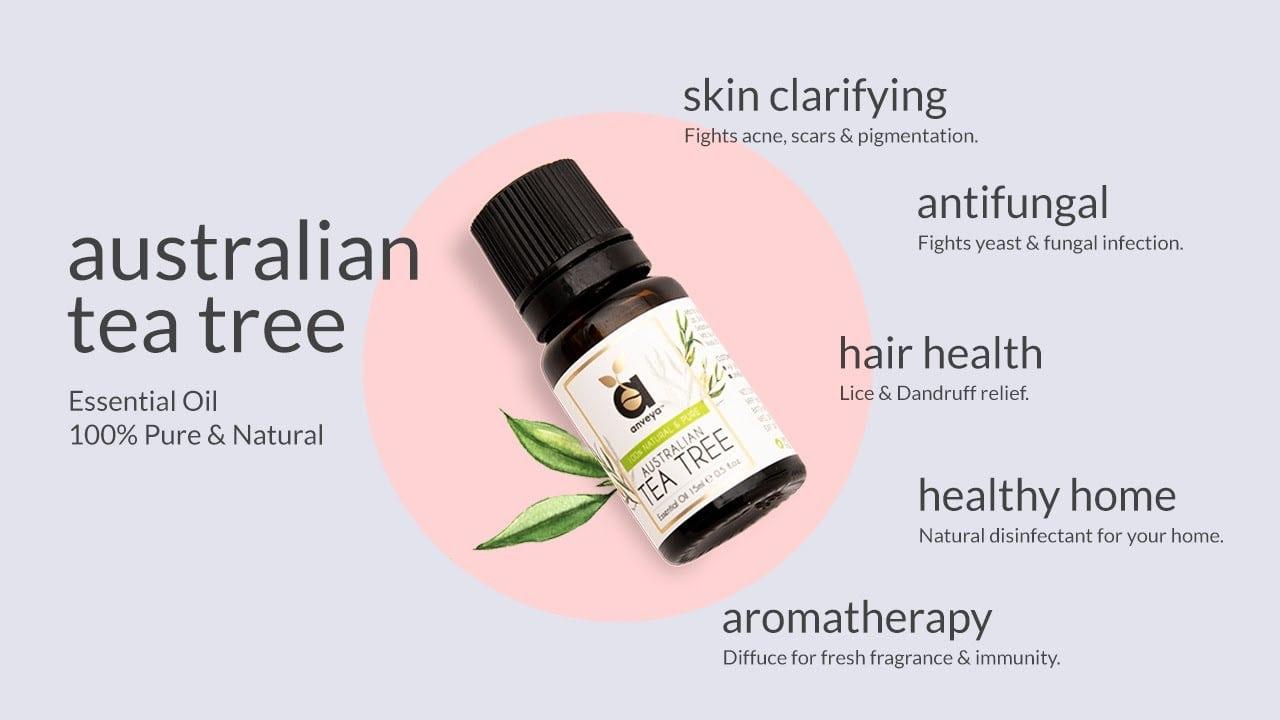 Anveya Tea tree oil | Best Tea Tree Oil